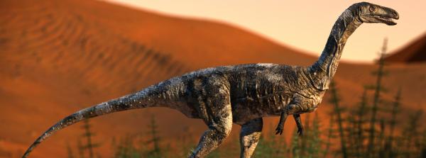 Reconstrução em vida de Vespersaurus paranensis, que viveu no período cretáceo, há 90 milhões de anos atrás; fóssil da espécie, da mesma linagem do tiranossauro e do velociraptor, foi encontrado no município de Cruzeiro do Oeste, região noroeste do Paraná