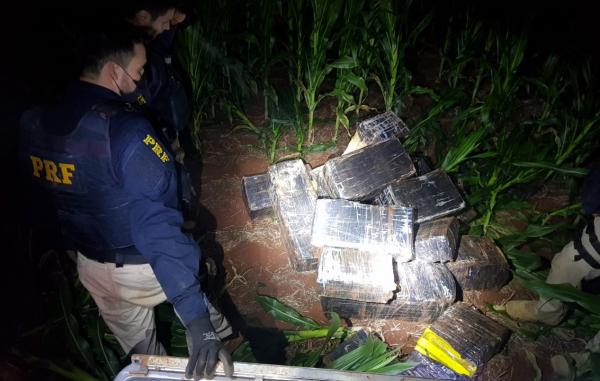 Droga encontrada em Pato Bragado