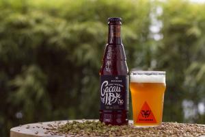 Vinho ou cerveja no feriadão de Páscoa em Curitiba ? Você decide qual evento ir