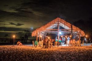 Startup seleciona jovens para uma semana de imersão na Amazônia. Saiba como se inscrever