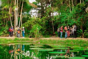 Especialistas e estudantes debatem sobre a Amazônia em Curitiba. Veja a programação