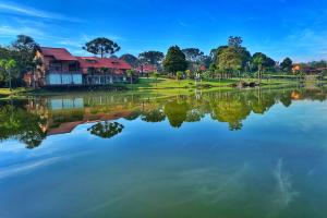 Cinco lugares para aproveitar o feriado perto de Curitiba