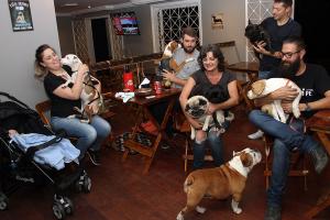 Curitiba ganha bar onde os cães entram com os donos