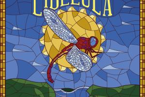 Festival Libélula divulga line up de ano novo e lança edição de carnaval