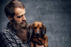 Estudo mostra que barbas são mais sujas que pelos de cachorros