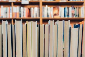 Shopping virtual vende livros novos, seminovos e usados sem frete até quarta