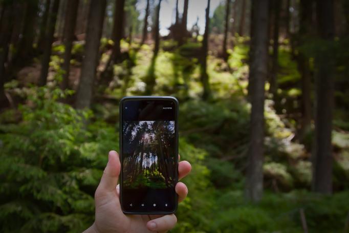 Perfis em redes sociais mostram novas formas de pensar a sustentabilidade do planeta.