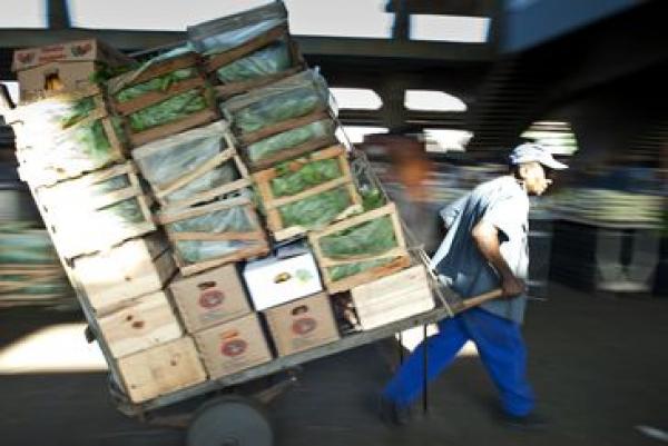 Empregos informais representam mais de 60% das vagas em todo o mundo