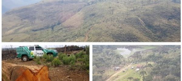 Imagens da fiscaliza\u00e7\u00e3o do MP-PR do desmatamento da Mata Atl\u00e2ntica