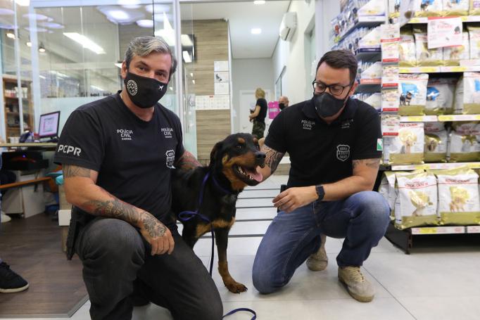 O delegado Matheus Laiola (à direira) com um dos animais que sofreu maus-tratos: crime sem rosto