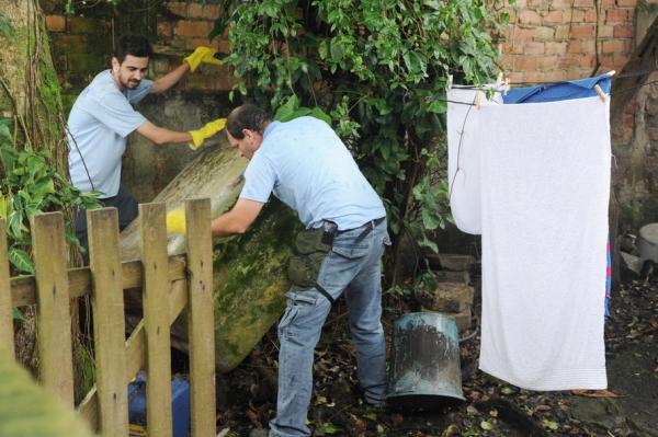 Agentes de saúde procuram focos do Aedes