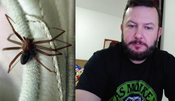 A aranha marrom e a vítima, Luciano Marchioro