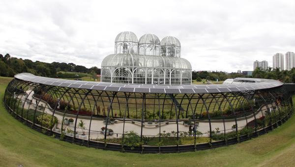 Jardim Botânico recebe 100 mil mudas de amores-perfeitos