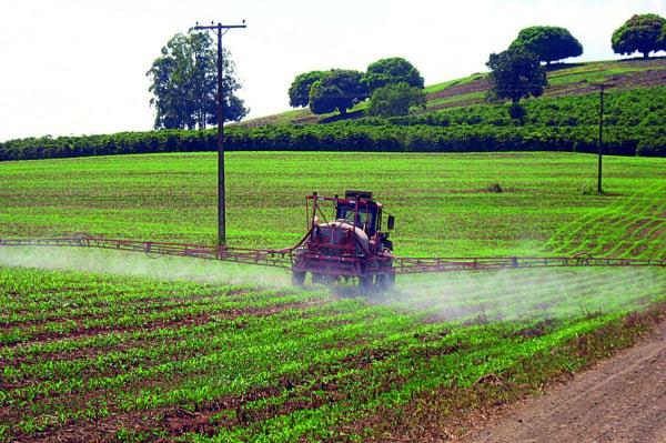 Uso de agrotóxicos nas lavouras é tema de debate no Paraná