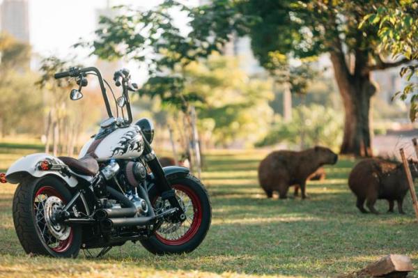 A moto Fire Horse, uma das concorrentes ao título de Custom King Brasil 2019