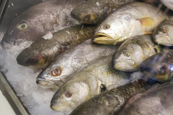Curitiba terá 18 pontos extras para a venda de pescados nesta semana