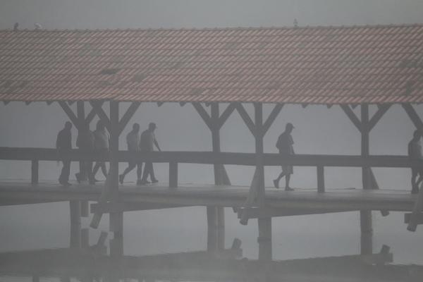 Cenário no Parque Tingui na manhã de ontem: visibilidade reduzida