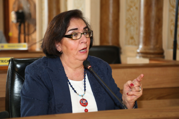 """Julieta Reis (DEM): vereadora alega que medida seria uma forma de """"coibir o tumulto e a perturbação do sossego"""""""