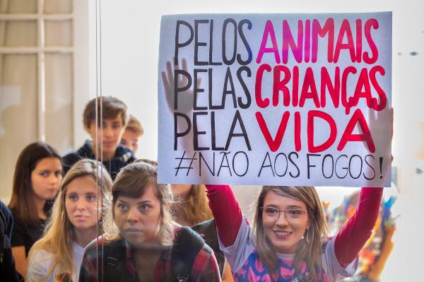 Projeto que restringe uso de fogos de artifício em Curitiba é aprovado na Câmara - Bem Paraná