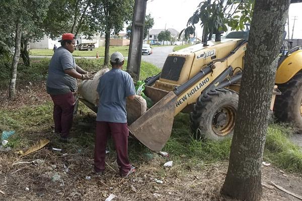Curitiba realizou mutirão de coleta de lixo contra a dengue na CIC