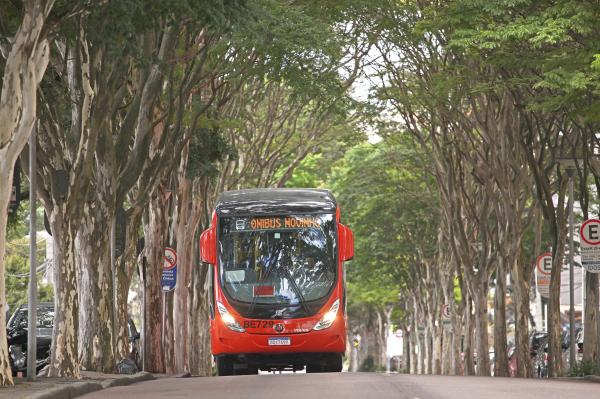 Onibus novo em Curitiba: lote se divide em modelos convencionais, padron, articulados e biarticulados
