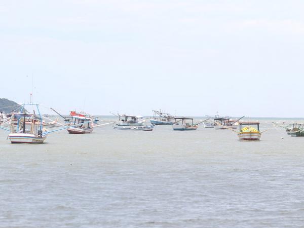 Temporada de verão é o 'Natal' dos 5,7 mil pescadores do Litoral paranaense