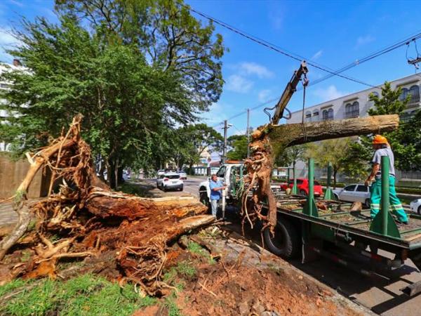 Equipes intensificam limpeza de ruas e equipamentos atingidos pelo temporal