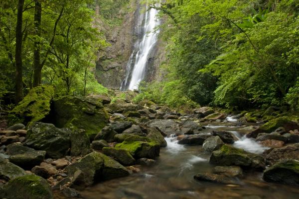A Grande Reserva também une reservas espalhadas pela Mata Atlântica, como a Reserva Natural Salto Morato