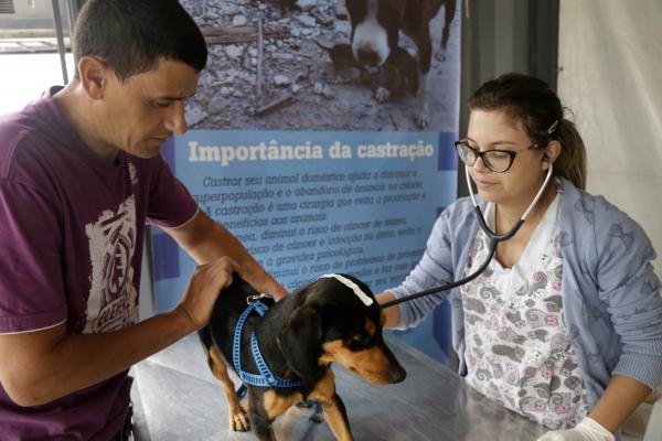 Serão atendidos cães e gatos, machos e fêmeas, com idade entre 5 meses a 8 anos,