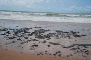 Marinha diz que óleo que atinge Nordeste não foi produzido ou comercializado no Brasil