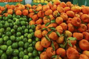 Clientes do Sacolões da Família já podem comprar frutas e verduras de inverno