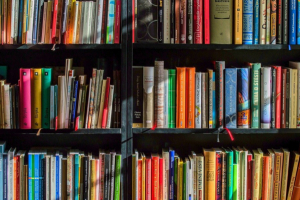 Mercado editorial sofre tombo em 2020, mas pandemia reforça importância da leitura