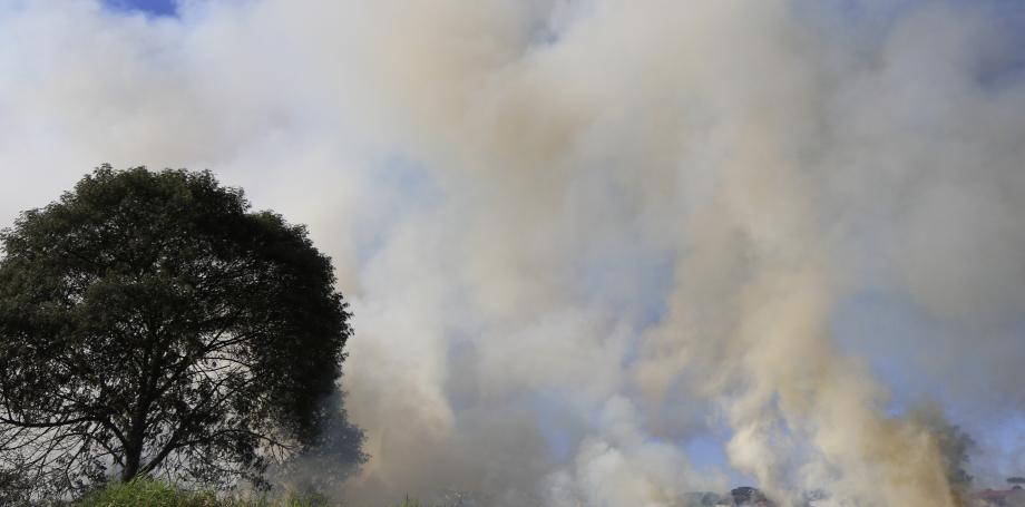 Paraná está entre as regiões afetadas pelo corredor de fumaça que vem da Amazônia