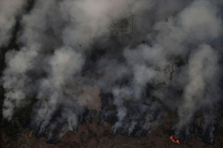Bolsonaro autoriza operação das Forças Armadas na Amazônia para combater incêndios